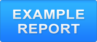 View Example Reports